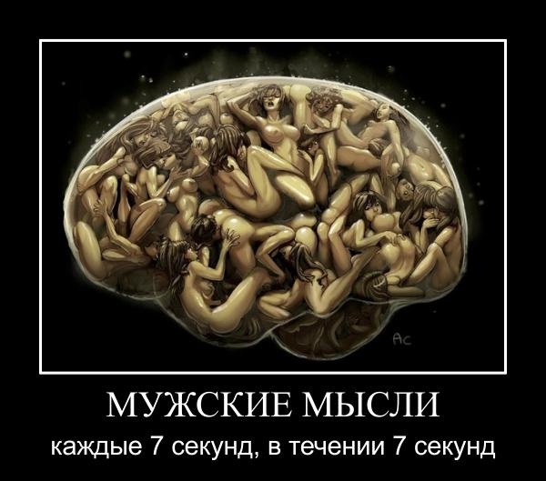http://s4.uploads.ru/05JzF.jpg