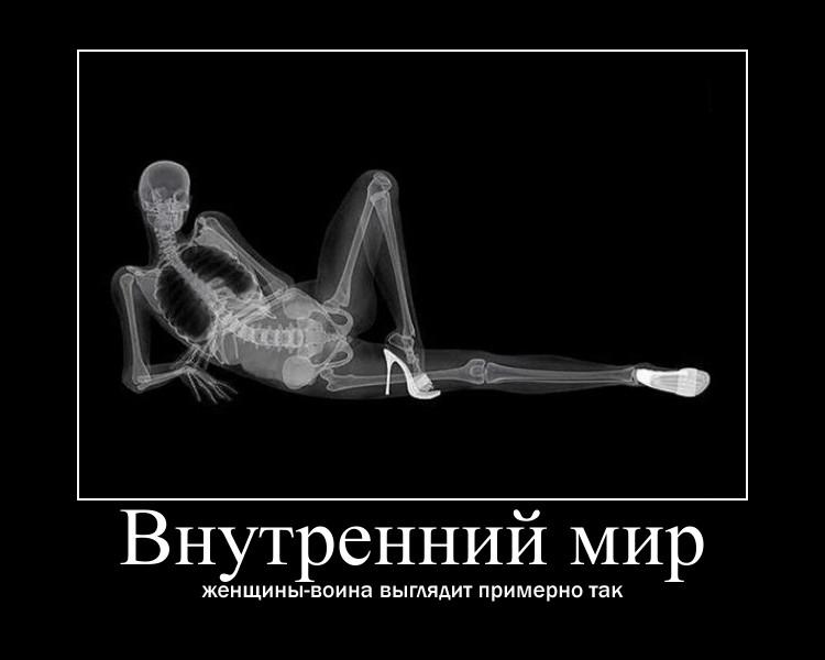http://s4.uploads.ru/0WeaE.jpg