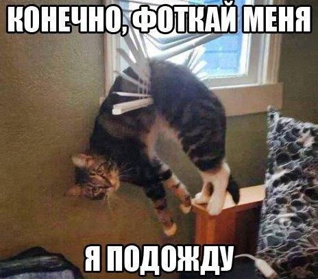 http://s4.uploads.ru/0wCUW.jpg