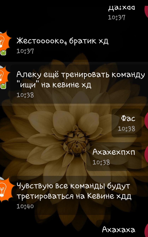 http://s4.uploads.ru/1zk89.png