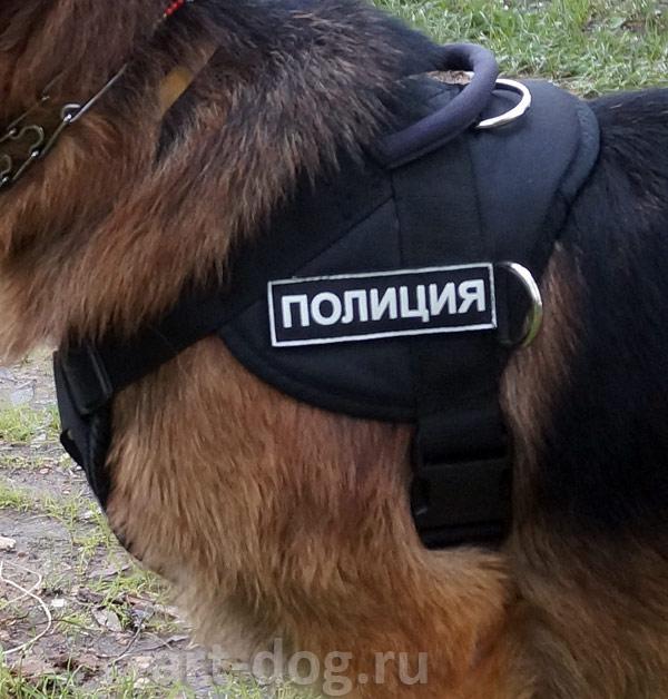 http://s4.uploads.ru/23tOb.jpg