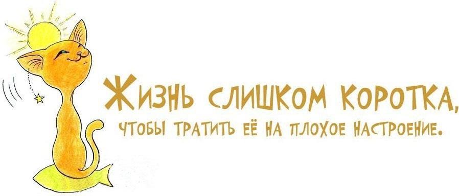 http://s4.uploads.ru/2Zelk.jpg
