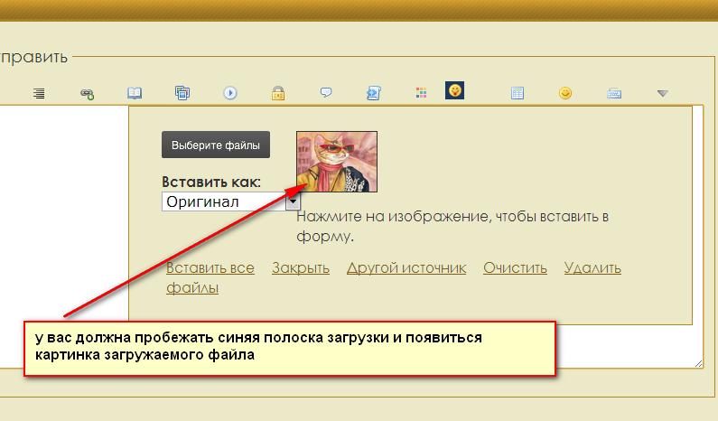 http://s4.uploads.ru/2aG5q.png