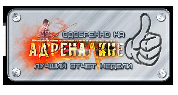 http://s4.uploads.ru/3qV9k.png