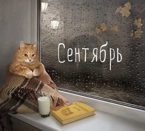 http://s4.uploads.ru/4xcUf.jpg