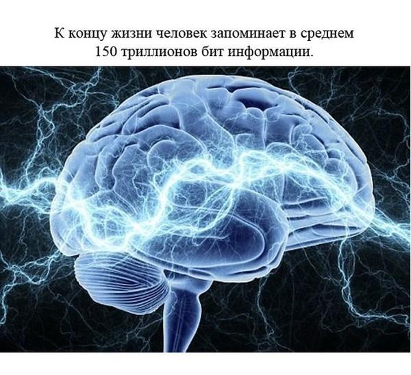 http://s4.uploads.ru/5OWEU.jpg