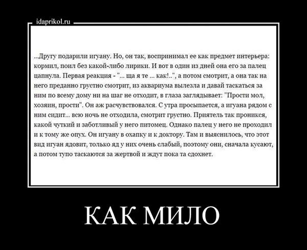 http://s4.uploads.ru/6dpyS.jpg