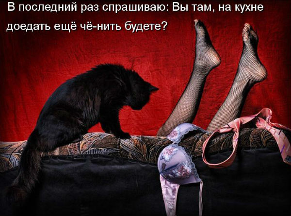 http://s4.uploads.ru/CBf06.jpg