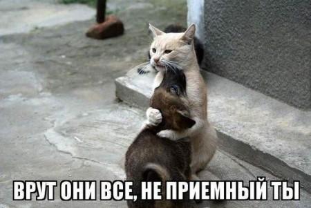 http://s4.uploads.ru/EksWc.jpg