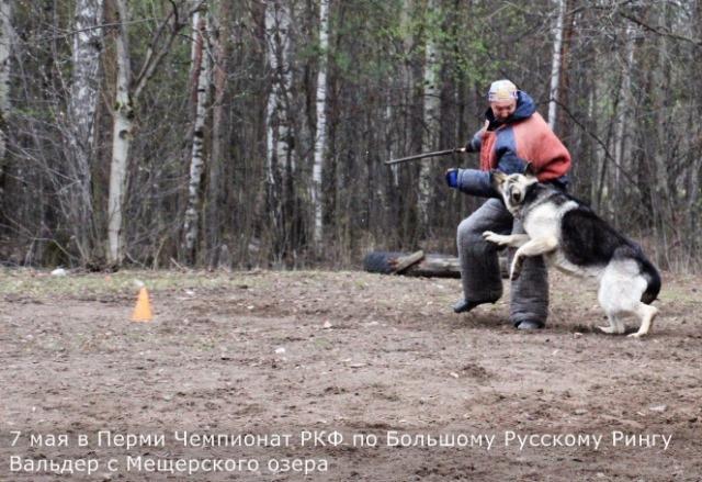 http://s4.uploads.ru/FeKcr.jpg