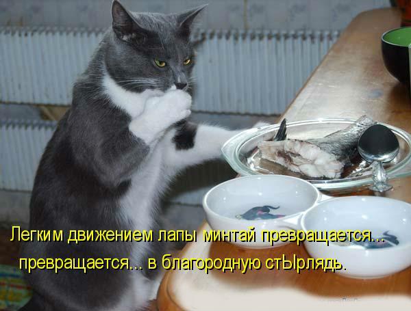 http://s4.uploads.ru/Fu0Wl.jpg