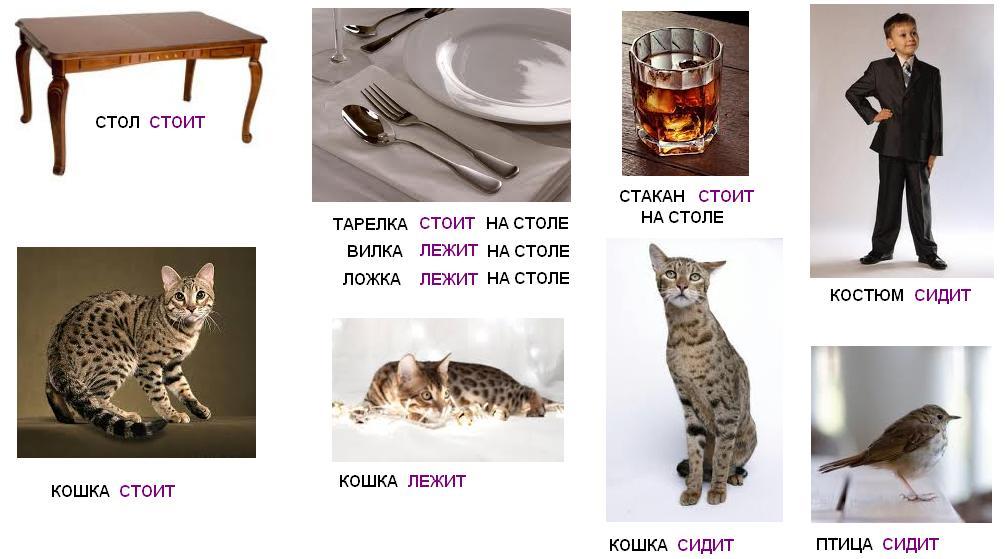 http://s4.uploads.ru/HbUEx.jpg
