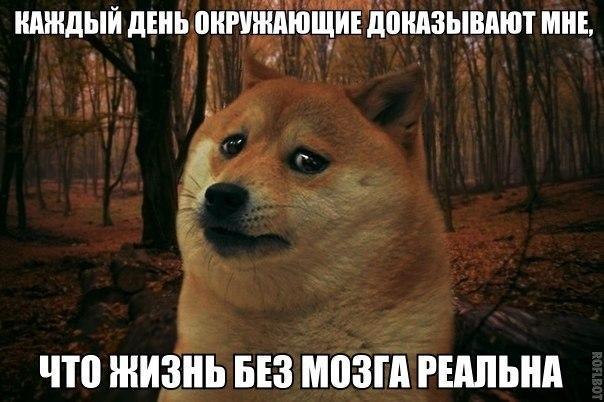 http://s4.uploads.ru/IMxy6.jpg