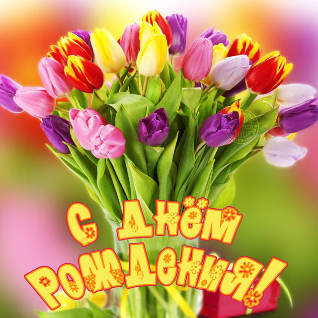 http://s4.uploads.ru/IqMGC.jpg