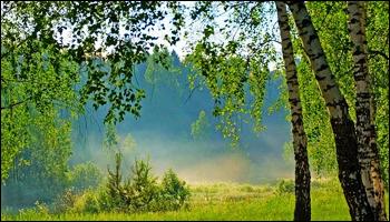 http://s4.uploads.ru/JtZSR.png