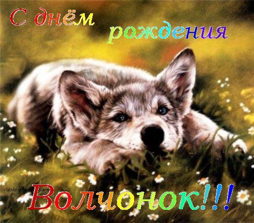 http://s4.uploads.ru/LzXmy.jpg