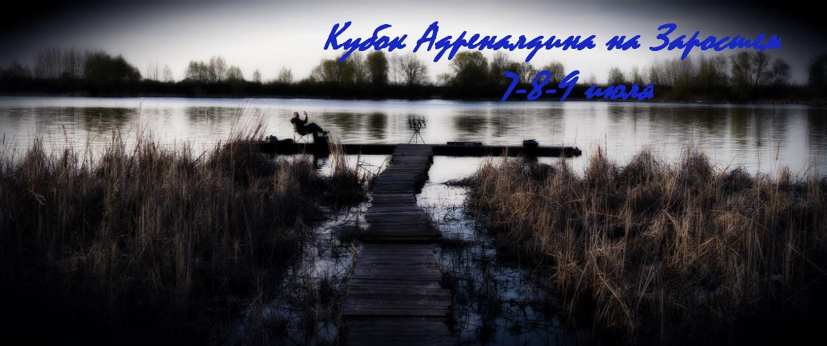 http://s4.uploads.ru/QNX4r.jpg