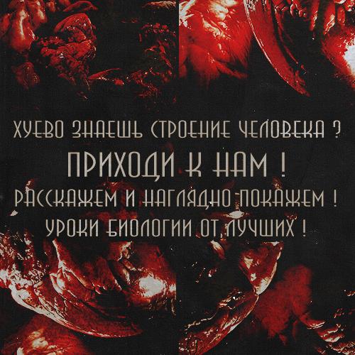http://s4.uploads.ru/QlqRA.png
