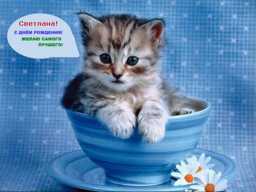 http://s4.uploads.ru/SbEHu.jpg