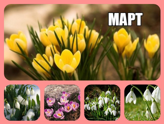 http://s4.uploads.ru/WAKx9.jpg