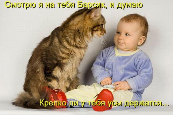 http://s4.uploads.ru/ZvwGk.jpg