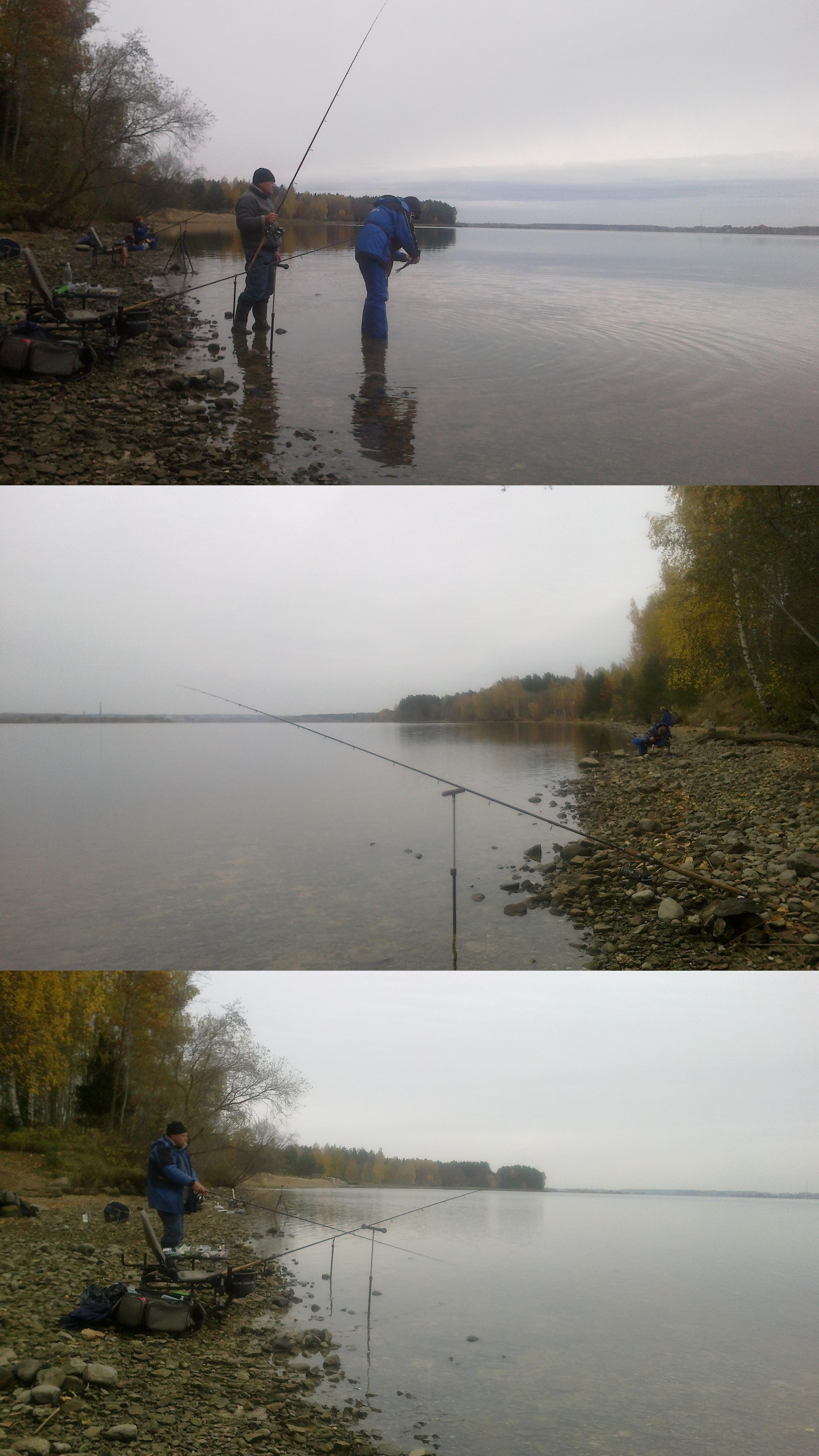 http://s4.uploads.ru/a5pwK.jpg