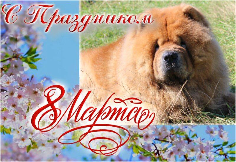 http://s4.uploads.ru/a9EVN.jpg