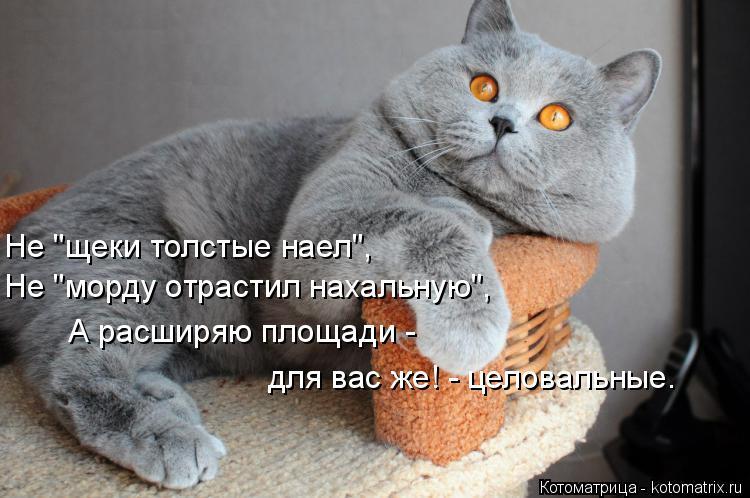http://s4.uploads.ru/asIpr.jpg