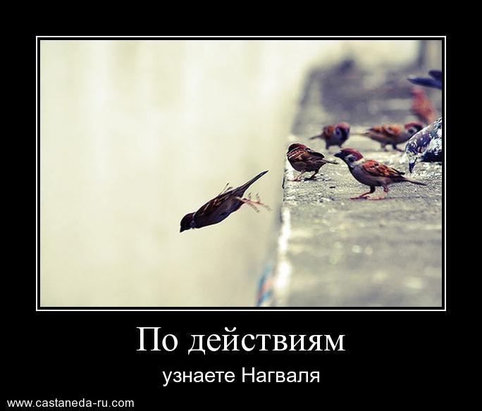 http://s4.uploads.ru/bBJTm.jpg