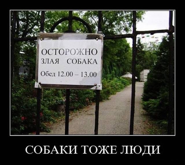 http://s4.uploads.ru/bFaU0.jpg