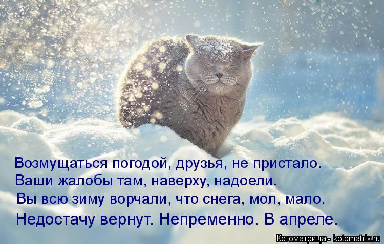 http://s4.uploads.ru/bZCTL.jpg