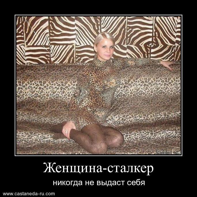 http://s4.uploads.ru/byP9W.jpg