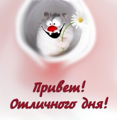 http://s4.uploads.ru/c8rC9.jpg