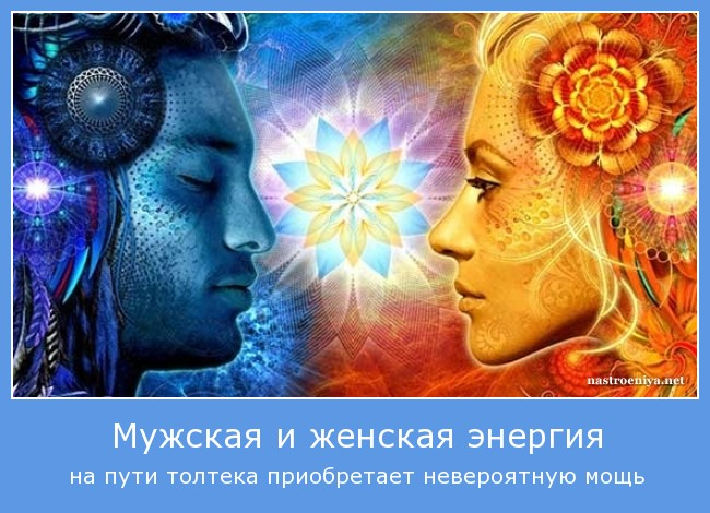 http://s4.uploads.ru/d58vN.jpg
