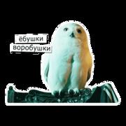 http://s4.uploads.ru/gsF4p.png