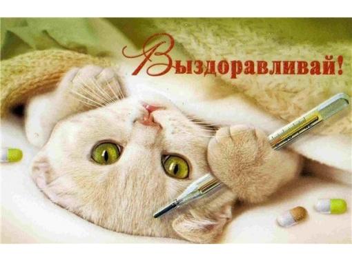 http://s4.uploads.ru/hvZIz.jpg