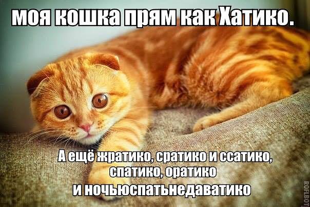 http://s4.uploads.ru/i9NKJ.jpg
