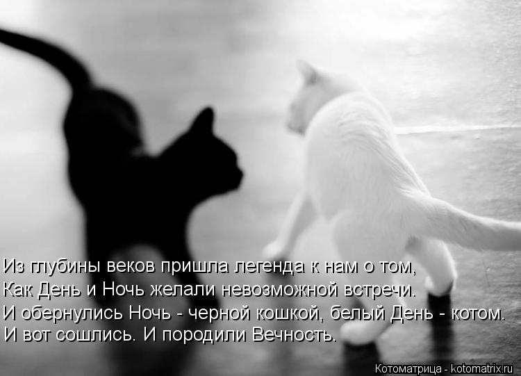 http://s4.uploads.ru/iFzg8.jpg