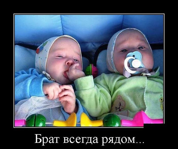 http://s4.uploads.ru/lugMc.jpg