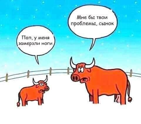 http://s4.uploads.ru/o7FKP.jpg