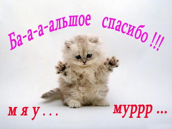 http://s4.uploads.ru/oBuxy.jpg