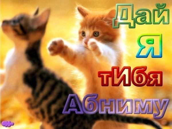 http://s4.uploads.ru/p5DSL.jpg