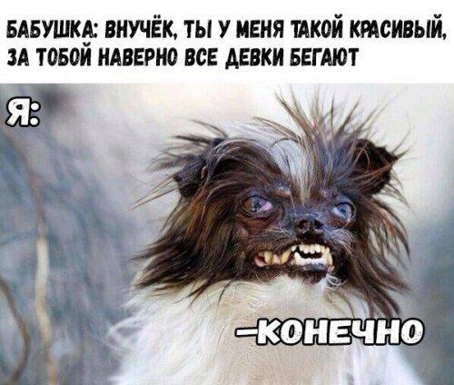 http://s4.uploads.ru/qUtXj.jpg