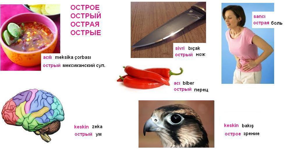 http://s4.uploads.ru/s9m71.jpg