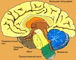 http://s4.uploads.ru/t/0PdA5.jpg