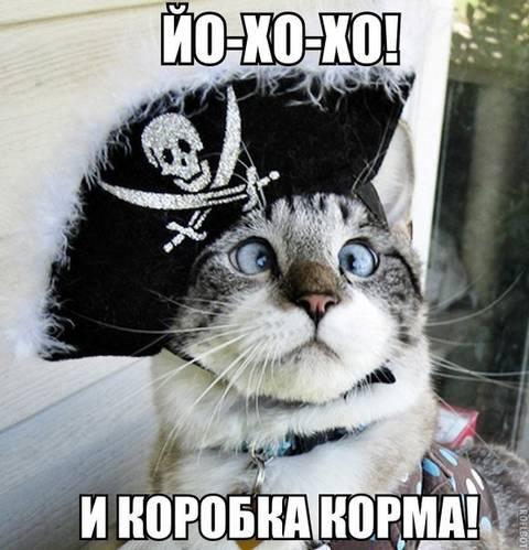 http://s4.uploads.ru/t/0Vbjy.jpg