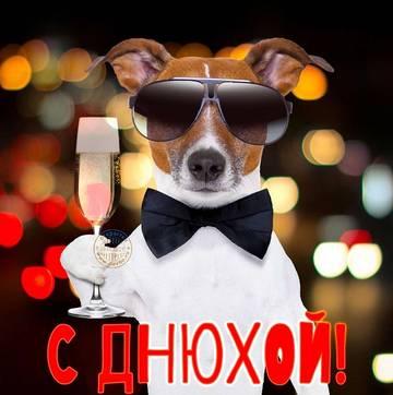 http://s4.uploads.ru/t/0xRzk.jpg