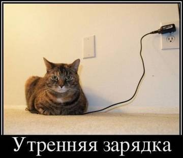 http://s4.uploads.ru/t/12nP7.jpg