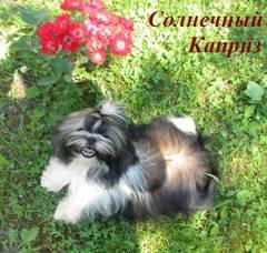 http://s4.uploads.ru/t/1Pu8a.jpg