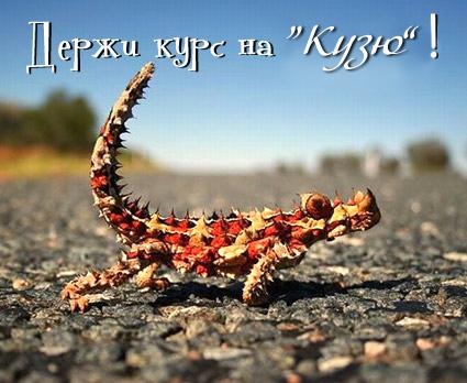 http://s4.uploads.ru/t/1uWMi.jpg